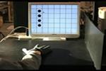 MPEG movie(5.0M) PC Interface
